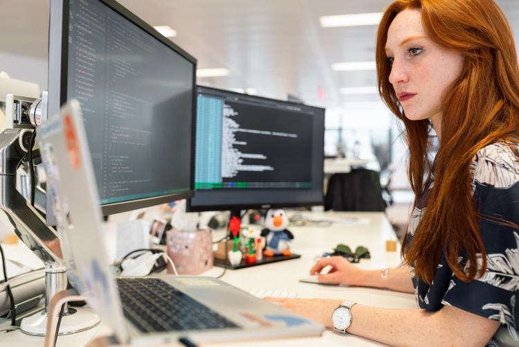 coddle software development